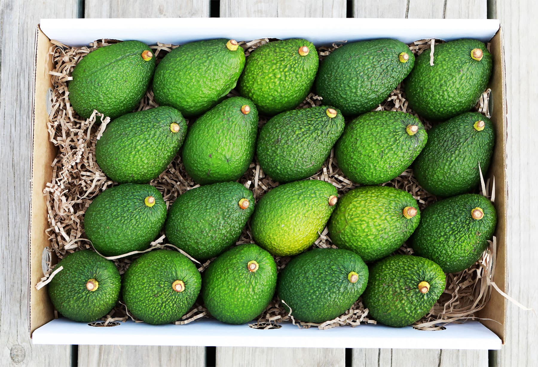 5.5kg box of Hass Avocados